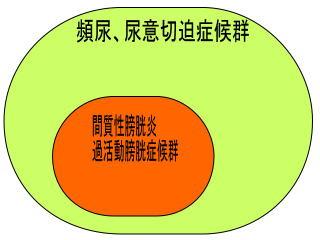 膀胱炎概念